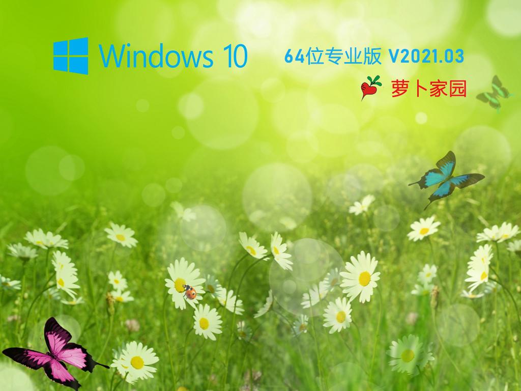 萝卜家园 Ghost Win10 64位 专业纯净版 V2021.03