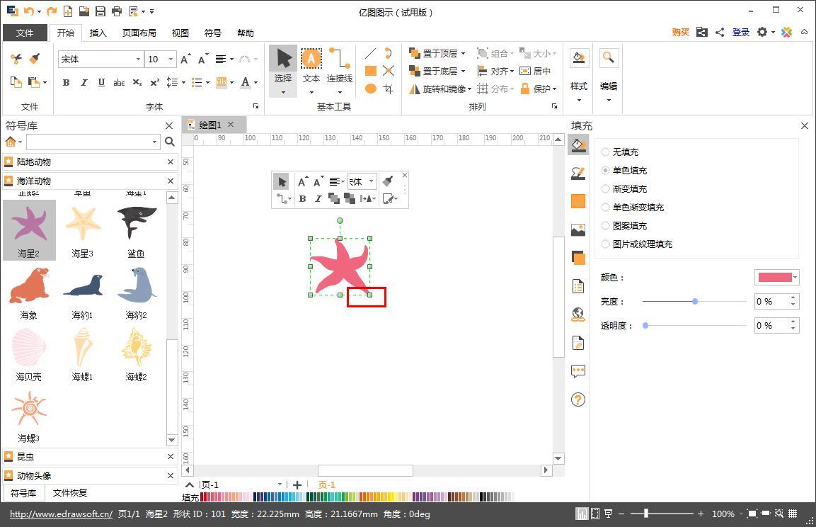 如何在Edraw Max亿图图示画海星