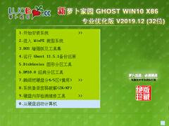 萝卜家园 GHOST WIN10 X86 专业优化版 V2019.12(32位)